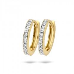 Blush Diamonds 0,10crt in geelgouden oorringen - 7612BDI